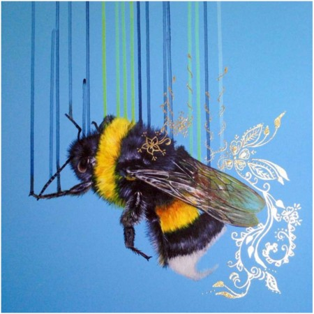 Bombus Terrestris  - click to visit artists gallery ->
