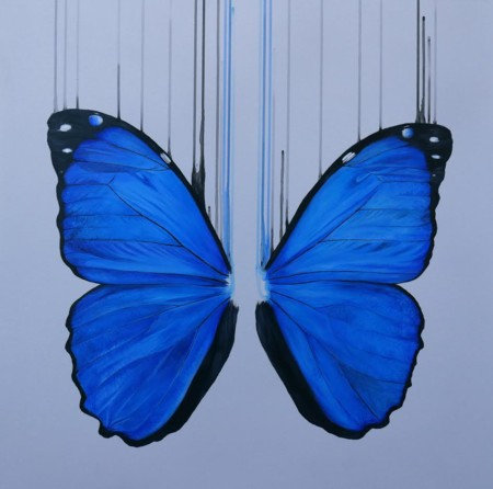 Morpho  - click to visit artists gallery ->