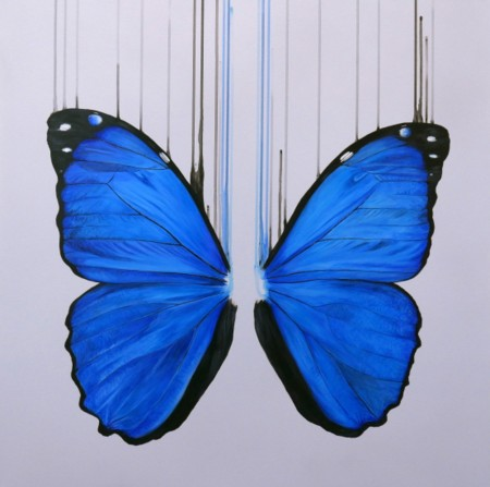 Morpho Mini  - click to visit artists gallery ->
