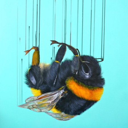 Louise McNaught  |  Falling for You